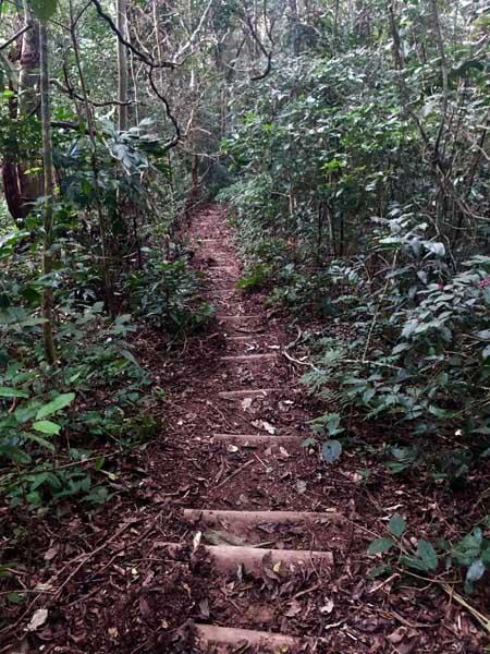Escadas Trilha do Baepi - Ilhabela - Por Elas Mundo Afora