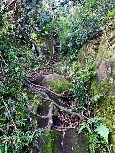 Escadas nas rochas - Trilha do Baepi - Ilhabela - Por Elas Mundo Afora