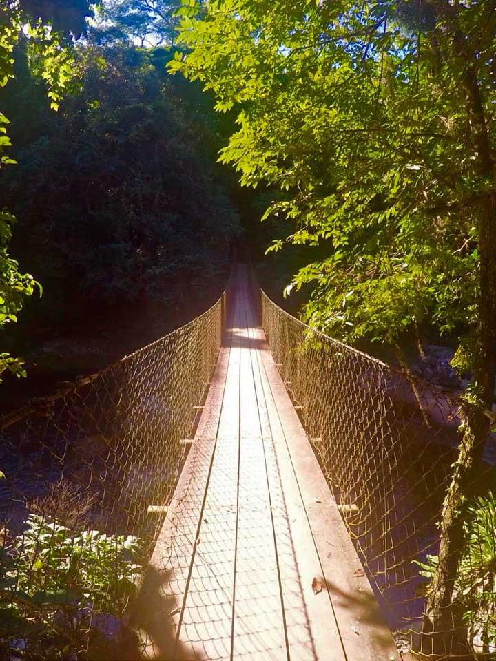 Ponte sobre cachoeira na Trilha do Bonete - Ilhabela