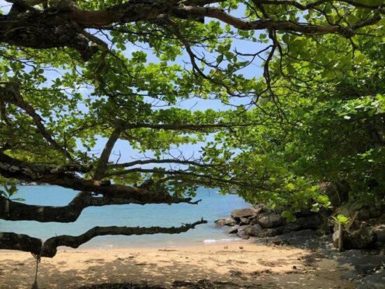 Praia do Saco do Eustáquio - Ilhabela