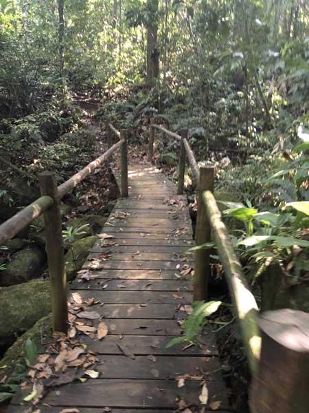 Trilha da Cachoeira do Gato - Praia de Castelhanos - Ilhabela