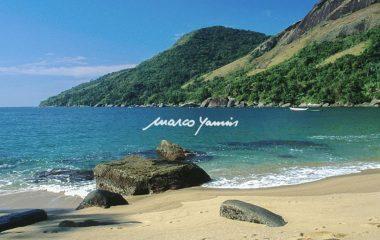 Trilhas das Praias: Mansa, Vermelha e Figueira