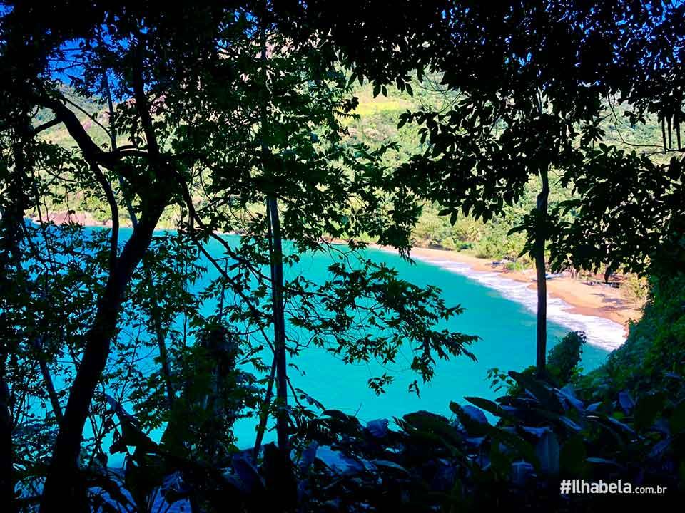 Trilha da Praia Vermelha - Ilhabela - Ilhabela.com.br