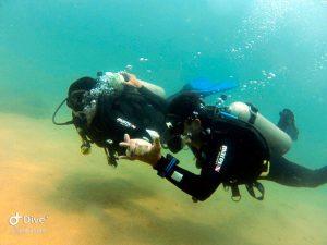 mergulho-em-ilhabela-ilha-divers-02