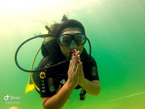 mergulho-em-ilhabela-ilha-divers-04