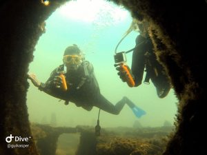 mergulho-em-ilhabela-ilha-divers-06