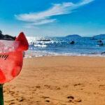 Papagaio Ilhabela - Bar e restaurante na Praia do Curral