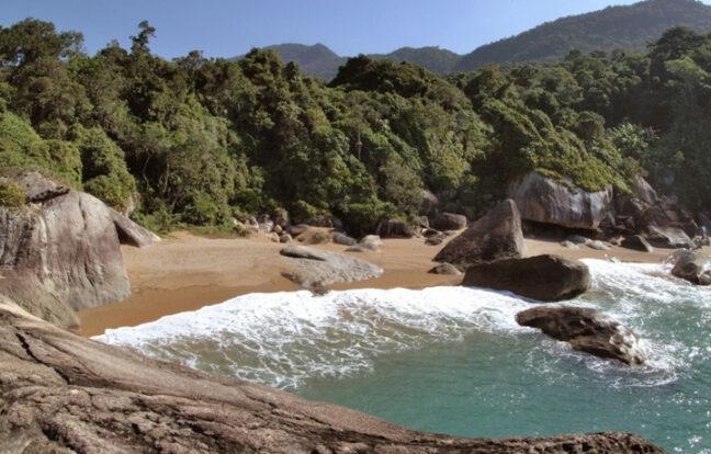 Praia do Gato - Portal Ilhabela.com.br