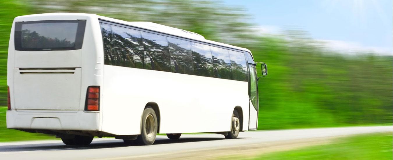 Estradas e Transportes em Ilhabela