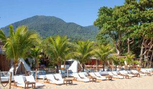 dpny-beach-hotel-praia-do-curral-ilhabela-beach-club-mata