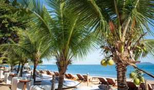 dpny-beach-hotel-praia-do-curral-ilhabela-beach-club-praia
