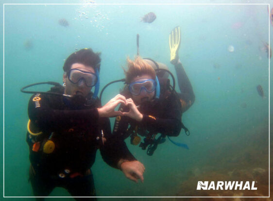 Narwhal Mergulho em Ilhabela - Casal no fundo do mar