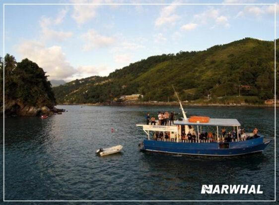 Narwhal Mergulho em Ilhabela - Escuna