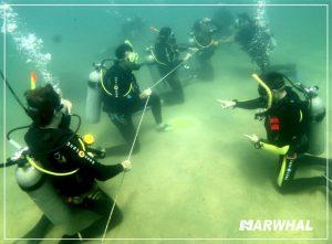 mergulho-com-a-narwhal-em-ilhabela-instrutor-fundo-do-mar