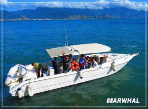 mergulho-com-a-narwhal-em-ilhabela-lancha