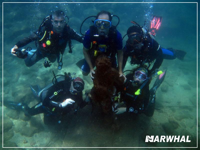 Narwhal Mergulho em Ilhabela - Alunos no fundo do mar