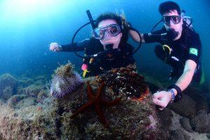 mergulho-ferrara-turismo-ilhabela