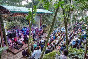 festival-vermelhos-2015-anfiteatro-floresta