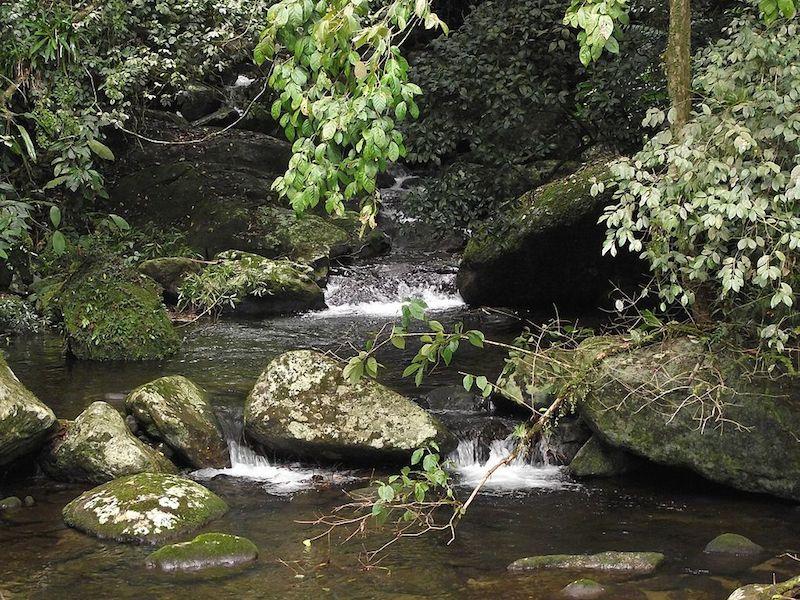 Queda de Água em Ilhabela (foto: rillke - wikimedia commons)