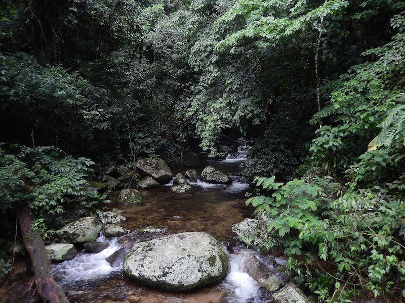 Caminho para a Praia de Castelhanos (Imagem: FabioIn22/Wikimedia Commons)