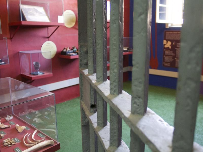 Entrada para sala da exposição arqueológica (Imagem: Arquivo Pessoal/Alessandra Stefani)