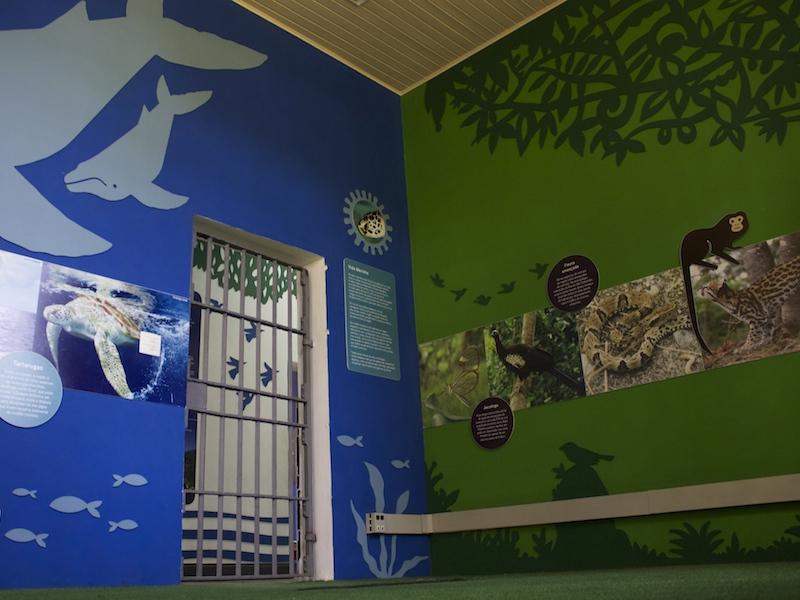 Sala com exposição da fauna e flora (Imagem: Arquivo Pessoal/Alessandra Stefani)