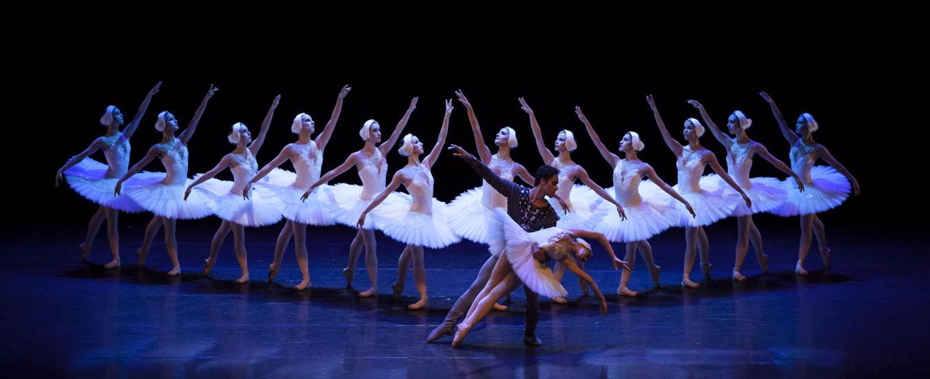 Elenco São Paulo Companhia de Dança em II Ato de O Lago dos Cisnes_de Mario Galizzi (Foto: Fernanda Kirmayr)