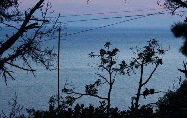 Costa Sul Chalés Ilhabela