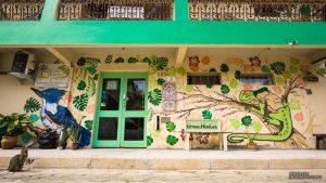 1-green-hostel-ilhabela