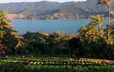 MUDA Alimentos Agroecológicos