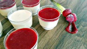 gelato-italiano-ilhabela-gelateria-tradizionale-2