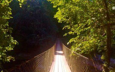 O que fazer no Parque Estadual de Ilhabela – dicas de passeios