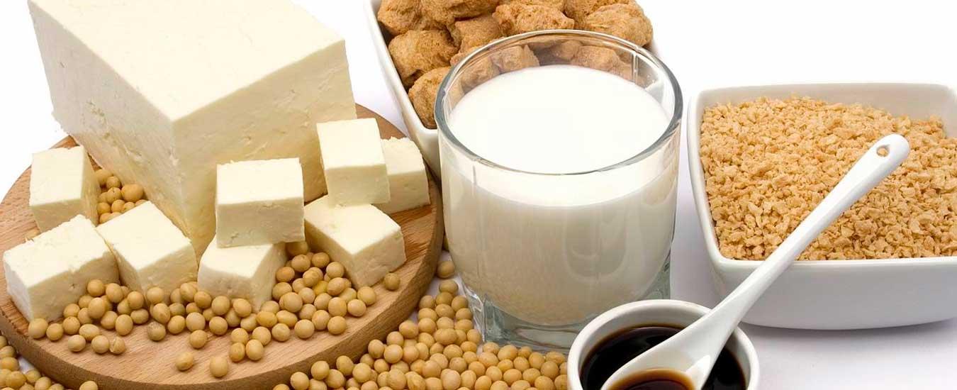 A importância da soja e o melhor tofu de Ilhabela