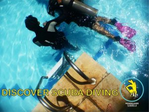 mergulhaso-aula-de-mergulho-em-piscina-ilhabela