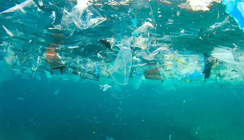 Poluição plástica nos oceanos