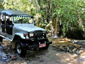 KR-Turismo-Ilhabela-trilha