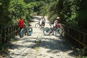 dome-bikes-e-bikes-em-ilhabela-trilha
