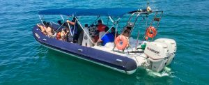 nilton-turismo-passeio-em-ilhabela-boat
