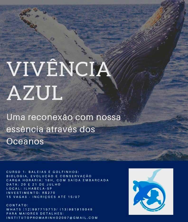 Vivência Azul - Curso Baleias e Golfinhos - Instituto Ilhabela Pró-Marinho