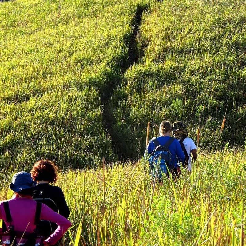 PH Off Trips - Guia de Ecoturismo em Ilhabela - Trilhas Montanhas