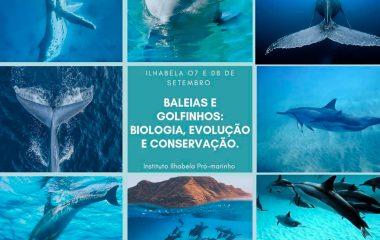 Vivência Azul – Baleias e Golfinhos