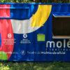 Molécoola chega à Ilhabela no Festival Sustenta