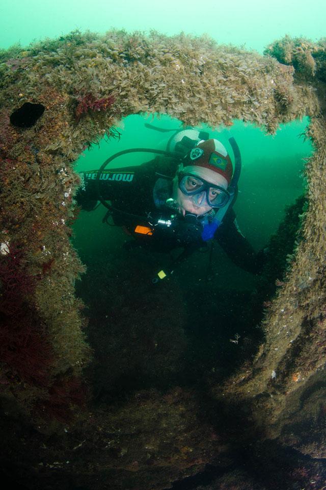 7 dicas de mergulho em Ilhabela - Oceano Sub - Ilhabela.com.br