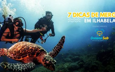 7 dicas sobre mergulho em Ilhabela