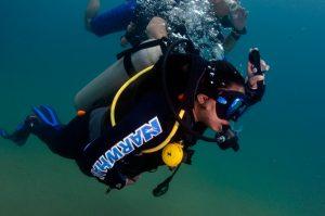 narwhal-mergulho-em-ilhabela