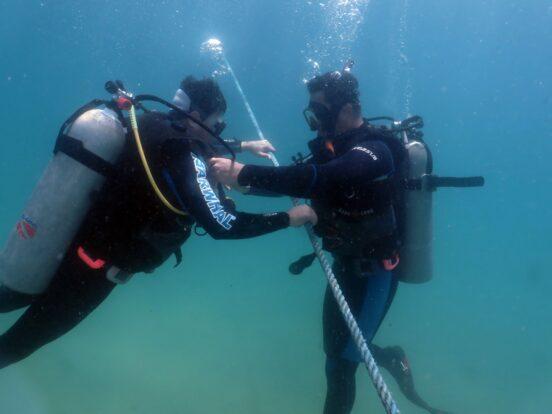 Mergulho em Ilhabela com a Narwhal