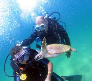 narwhal-mergulho-em-ilhabela-7