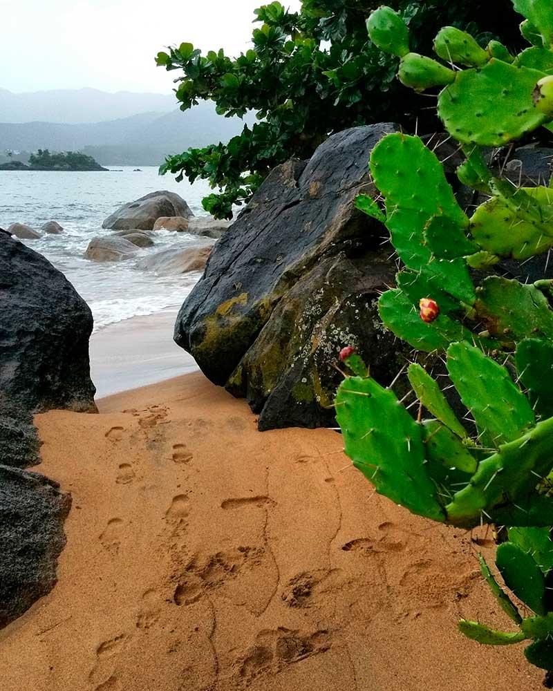 Ilhabela Beach rocks - Ilhabela por Estrangeiros   Ilhabela by Foreigners - Diane Hirt, from United States