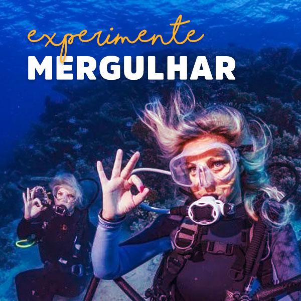 Experimente mergulhar em Ilhabela - Mergulho - Ilhabela.com.br