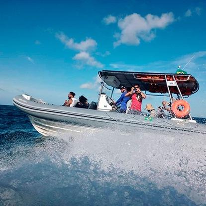 Up Adventure Turismo Ilhabela - Passeio de Barco